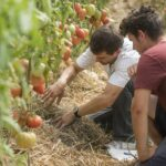 Bővül az Ökológiai Mezőgazdasági Kutatóintézet tevékenysége