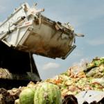 270 kiló élelmiszer kerül kukába egy átlag magyar családban évente – Élj maradéktalanul!